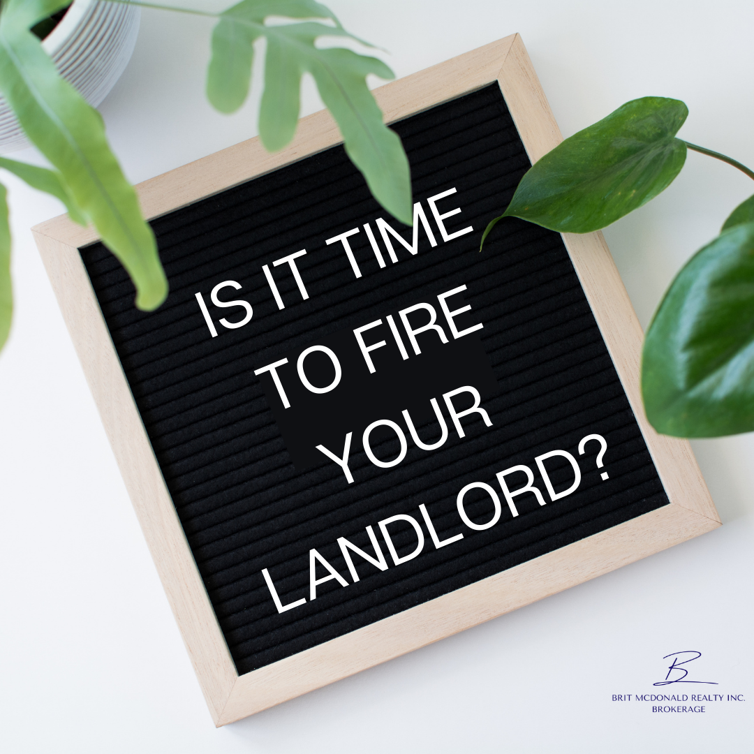 Is it Time to Fire Your Landlord?